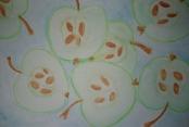 Sabines Früchtebild