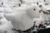 Sabines Schneevogel
