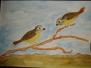Vögel auf dem Zweig E.