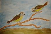 Sabines Vögel